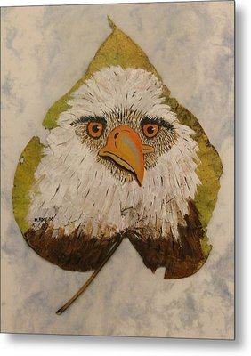 Bald Eagle Front View Metal Print