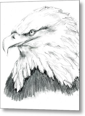 Metal Print featuring the drawing Bald Eagle by Marilyn Barton