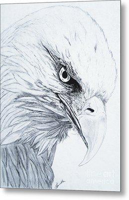Bald Eagle Metal Print by Nancy Rucker