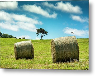 Bales Of Straw In A Field, Auvergne, France Metal Print