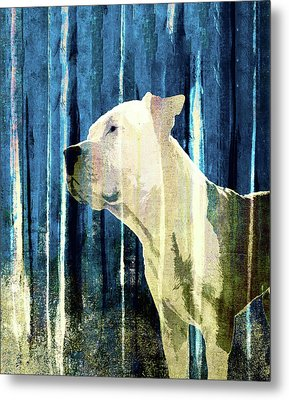 Bali The Dog Abstract Background Metal Print