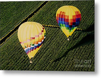 Metal Print featuring the painting Balloons Over Napa Valley by Cindy Lee Longhini