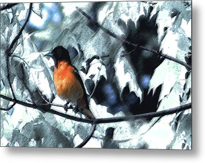 Baltimore Orioles Dream Metal Print by Nancy TeWinkel Lauren