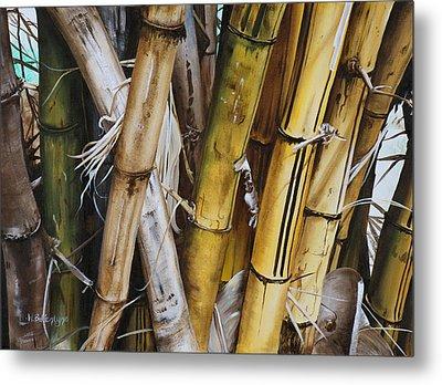 Bamboo Cluster Metal Print