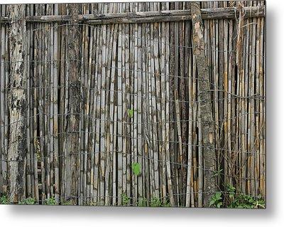 Bamboo Fence Metal Print