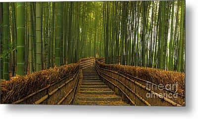 Bamboo Panorama - Kyoto Japan Metal Print
