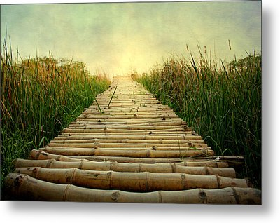 Bamboo Path In Grass At Sunrise Metal Print by Atul Tater