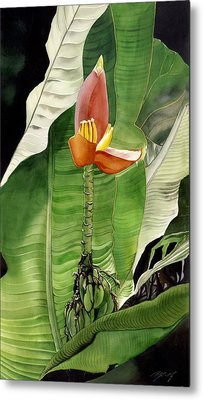 Metal Print featuring the painting Banana Blossom by Alfred Ng