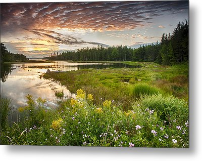 Metal Print featuring the photograph Bar Harbor Maine Sunset One by Kevin Blackburn
