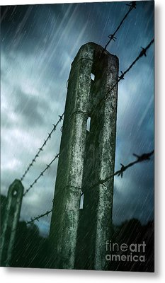 Barbed Wire Fence Metal Print by Carlos Caetano