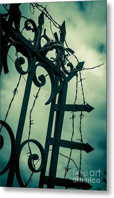 Barbed Wire Gate Metal Print by Carlos Caetano