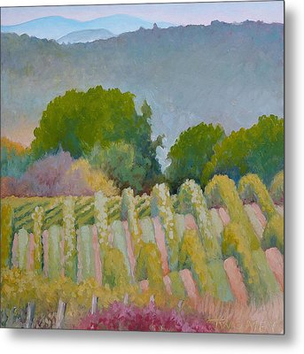 Barboursville Vineyards 1 Metal Print by Catherine Twomey
