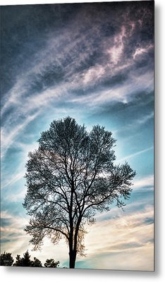Bare Sunset Metal Print