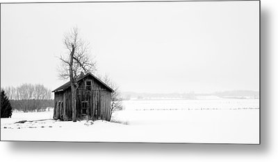 Bare Tree And Barn Metal Print by Levin Rodriguez