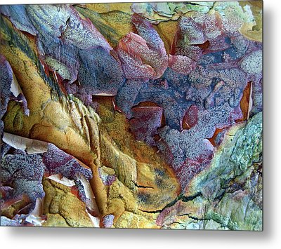 Bark Abstract Metal Print by Jessica Jenney