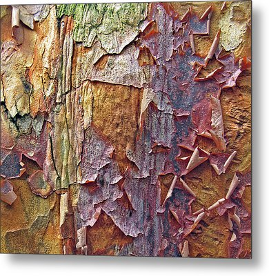 Nature By Design Metal Print by Jessica Jenney