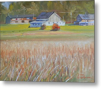 Barn  And Crops Metal Print by Ron Wilson