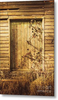 Barn Doors And Hanging Vines Metal Print by Jorgo Photography - Wall Art Gallery