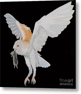 Metal Print featuring the painting Barn Owl by Eric Kempson