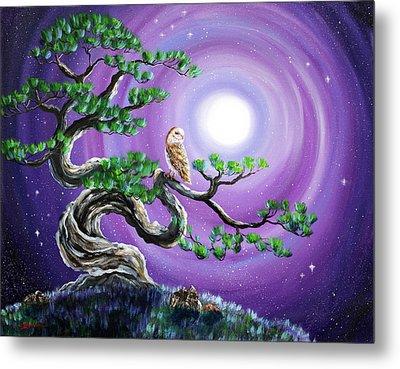 Barn Owl In Twisted Pine Tree Metal Print