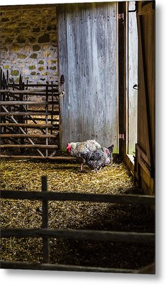 Barnyard Friends Metal Print