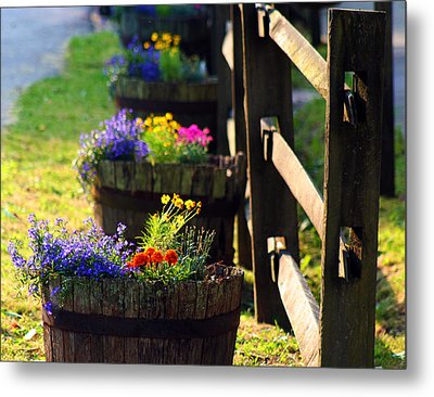 Barrel Of Spring Metal Print