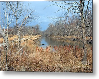 Barren Metal Print by Jeannie Burleson