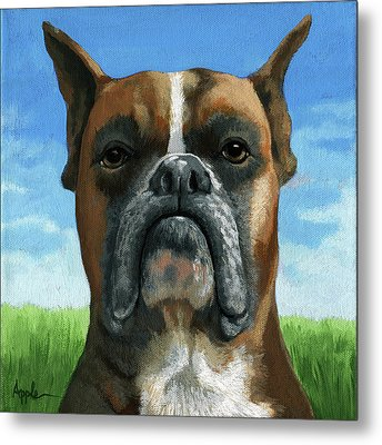 Barry Boxer Metal Print by Linda Apple