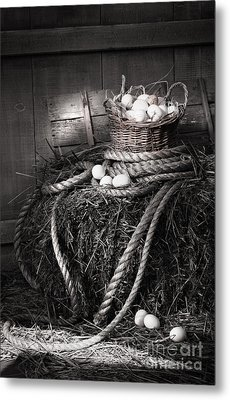 Basket Of Eggs On A Bale Of Hay Metal Print