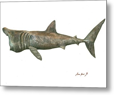 Basking Shark Metal Print