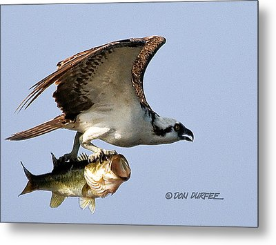 Metal Print featuring the photograph Bassmaster 3 by Don Durfee