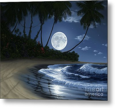 Bathed In Moonlight Metal Print by Al Hogue