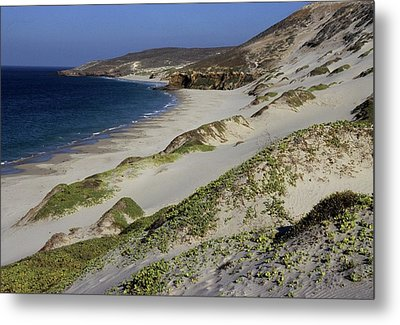 Bay Beach And Sand Dunes Metal Print by Don Kreuter