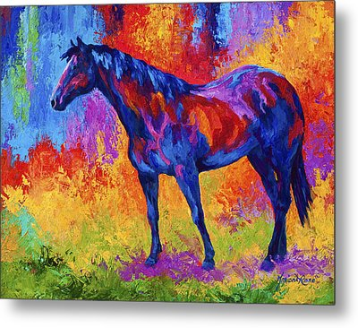 Bay Mare II Metal Print by Marion Rose