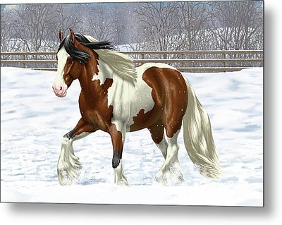 Bay Pinto Gypsy Vanner In Snow Metal Print by Crista Forest