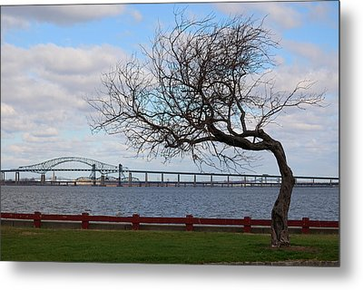 Bayonne Metal Print by Steven Richman