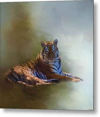 Be Calm In Your Heart - Tiger Art Metal Print
