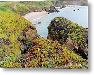 Beach Coves At Pigeon Point Metal Print by Art Block Collections