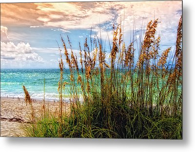 Beach Grass II Metal Print by Gina Cormier