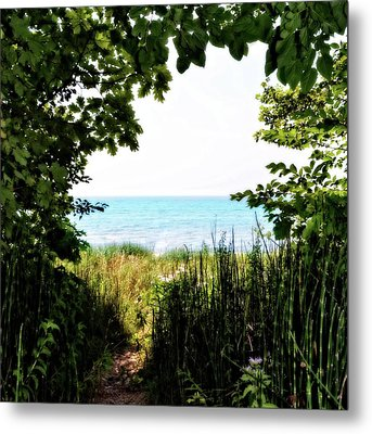 Metal Print featuring the photograph Beach Path With Snake Grass by Michelle Calkins