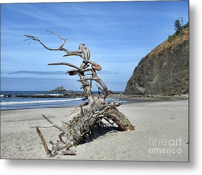 Metal Print featuring the photograph Beach Sculpture by Peggy Hughes