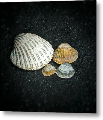 Beach Treasures  Metal Print by Karen Stahlros