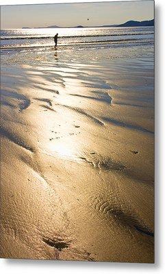 Beachcomber Metal Print by Aleck Rich Seddon