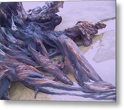 Beached Metal Print by Angi Parks
