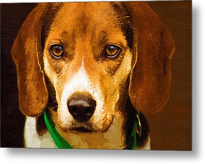 Beagle Hound Dog In Oil Metal Print by Kathy Clark