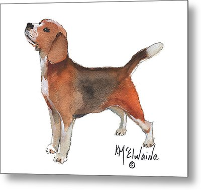 Beagle Watercolor Painting By Kmcelwaine Metal Print