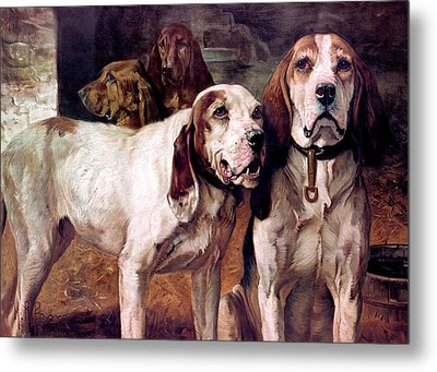 Bear Dogs Without Border Metal Print by H R Poore