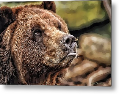 Metal Print featuring the photograph Bear Kiss by Kathy Tarochione