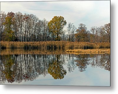 Bear Swamp Mirror Metal Print