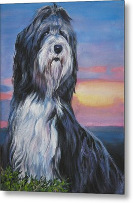 Bearded Collie Sunset Metal Print by Lee Ann Shepard